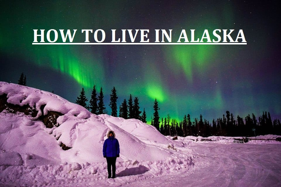 How to emigrate to Alaska- and SEE THE NORTHERN LIGHTS
